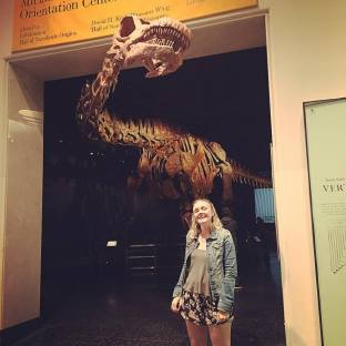Dinos at AMNH