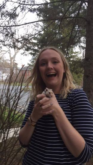 Taking hamsters outside