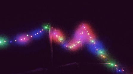 Fairy lights in my friend's yard